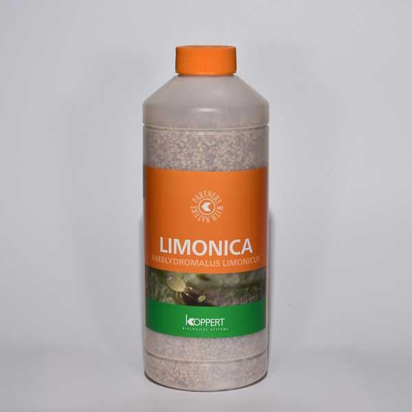 LIMONICA, predatory mites