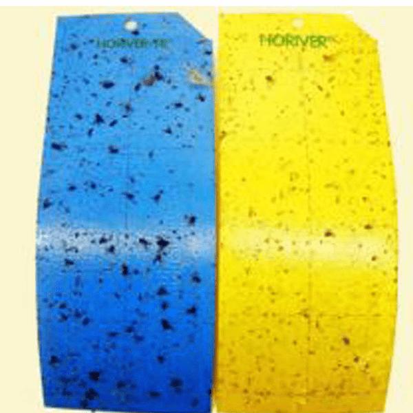 Horiver blauwe en gele vangplaten