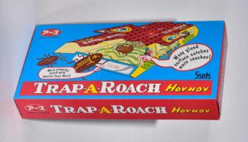 HoyHoy glue trap
