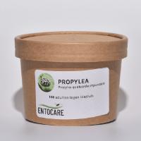 Product PROPYLEA